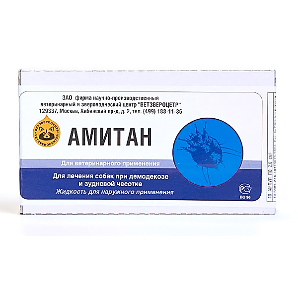 Амитан