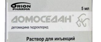 Домоседан
