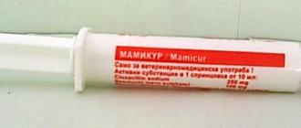 Мамикур