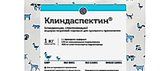 Клиндамицин порошок