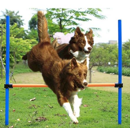 Резкие прыжки приводят к вывихам