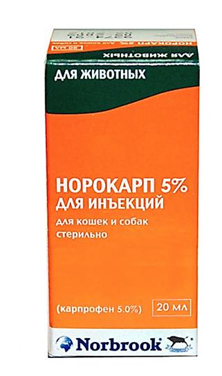 Норокарп