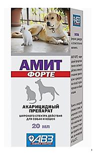 Амит Форте